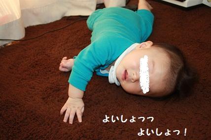 002_20101105210435.jpg