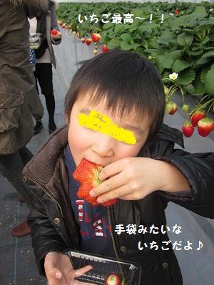 002_20110214173005.jpg