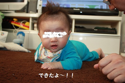 012_20101105210435.jpg