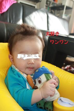 022_20101105210434.jpg