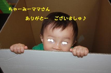 022_20110531114920.jpg