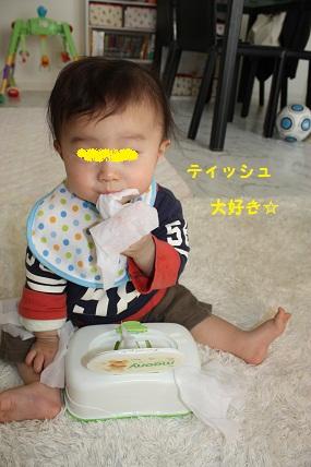 100_20110226121941.jpg