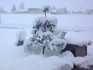 091215降雪2