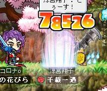 Maple0436.jpg