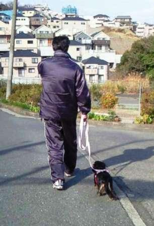 散歩20100103