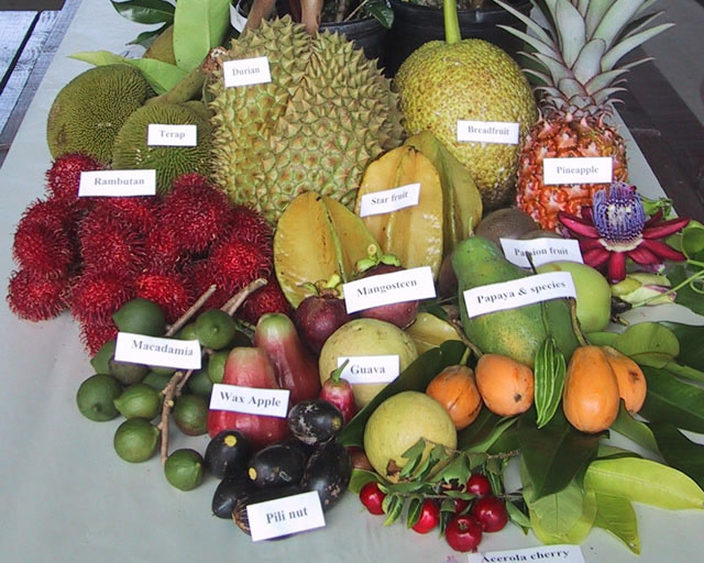 ARS_tropical_fruit.jpg