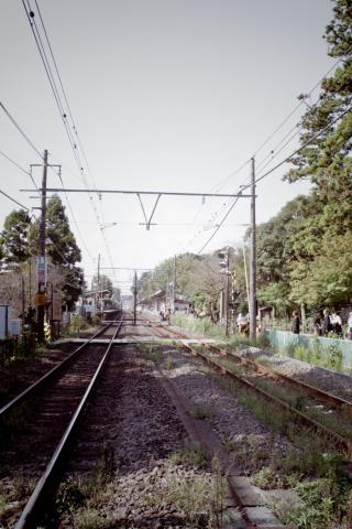 IMGP2340-t.jpg
