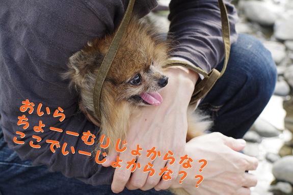 muri_m.jpg