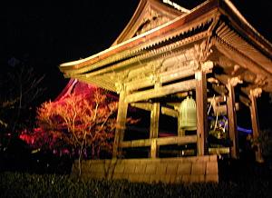 kotori_10_02_08_6.jpg