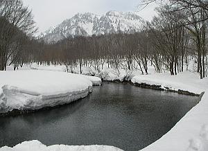 kotori_10_03_15.jpg