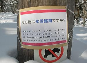 kotori_11_01_24_2.jpg