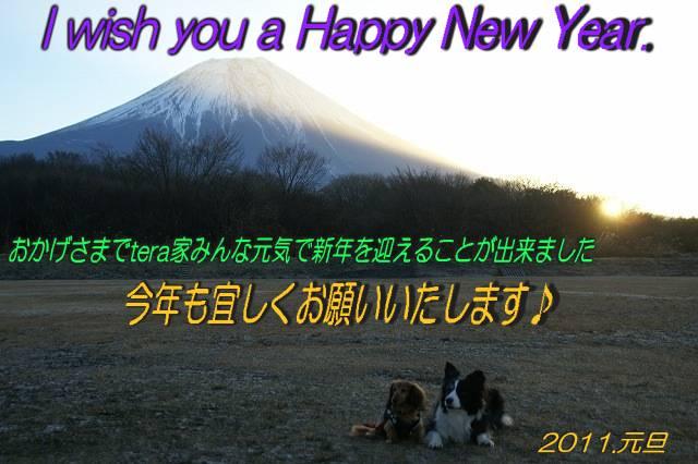 222_20101230204136.jpg
