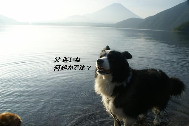 s-DSC06697.jpg