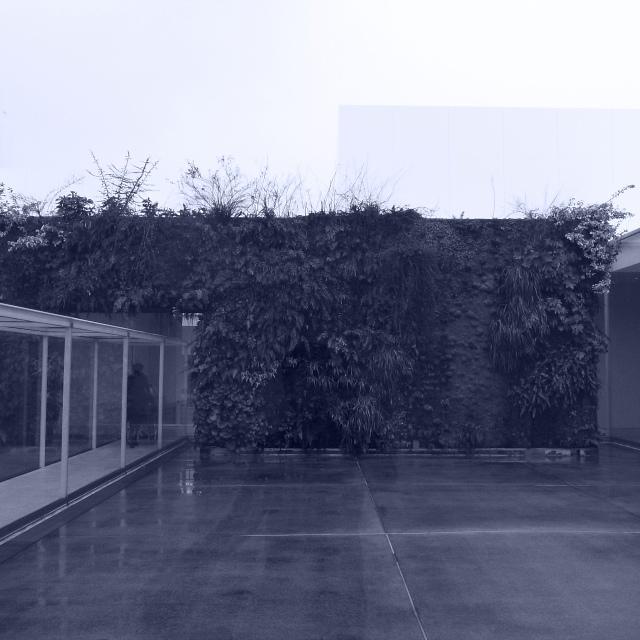 RIMG0178.jpg
