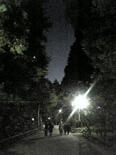 携帯画像200809 016