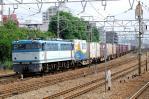 DSC_1599-2010-6-19.jpg