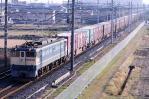 DSC_2606-2009-12-26.jpg