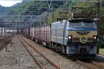 DSC_3668-2010-10-3.jpg