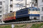 DSC_5321-2011-2-27.jpg