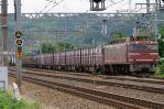 DSC_6679-2011-6-13.jpg