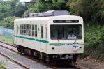 DSC_6812-2011-6-13.jpg