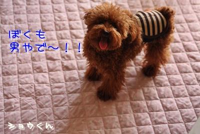 1_20090208231403.jpg
