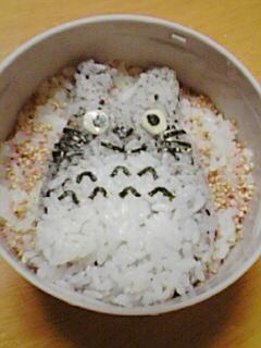 パパトトロ ご飯
