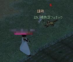 鶏VS狐3