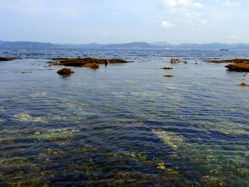 沖ノ島ポイント2
