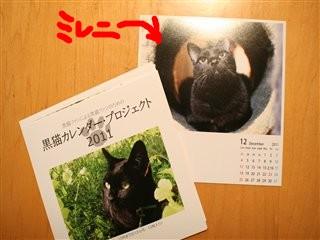 ミレニin黒猫カレンダー