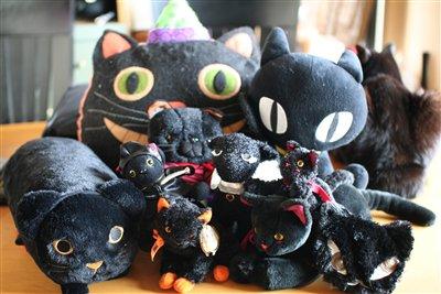 黒猫コレクション