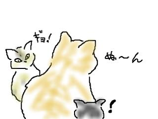 snap_kuroenpitsu_201125122649.jpg