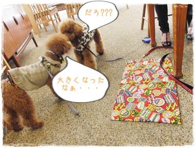 20090927blog4.jpg