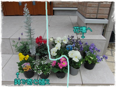 20091110blog1.jpg