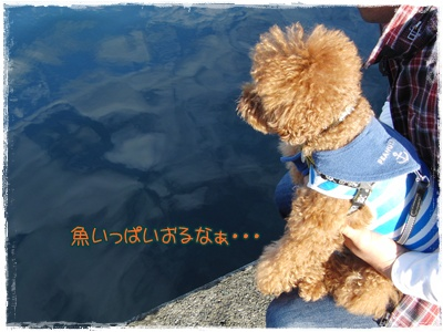 20091122blog2.jpg