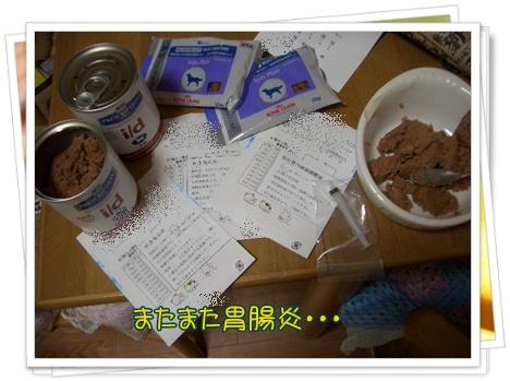 20100203blog1.jpg