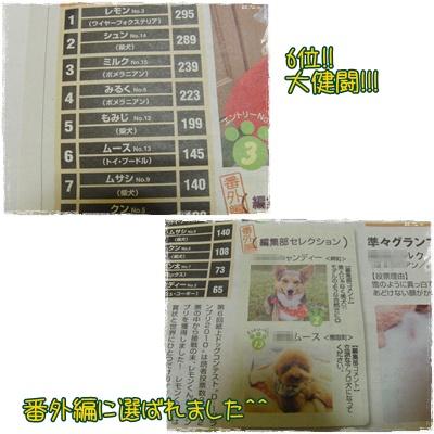 20100222blog2.jpg