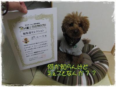 20100222blog3.jpg