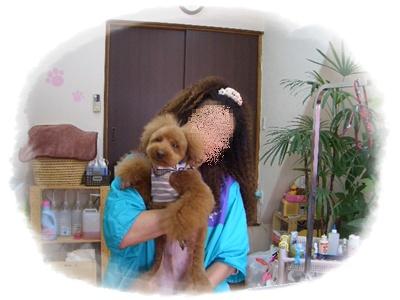 20100330blog3.jpg