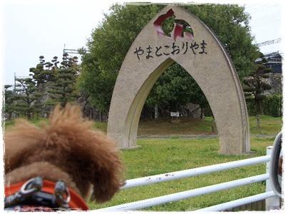 20100418blog1.jpg