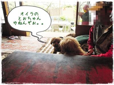 20100418blog8.jpg