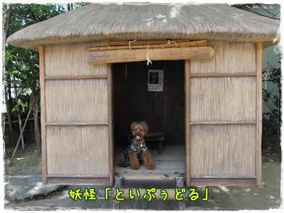 20100907blog7.jpg