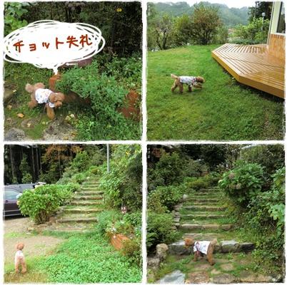 20101010blog1.jpg