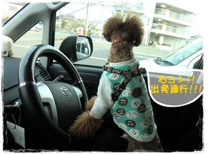 20110123blog1.jpg