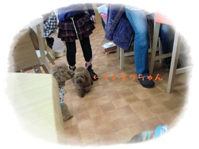 20110219blog9.jpg