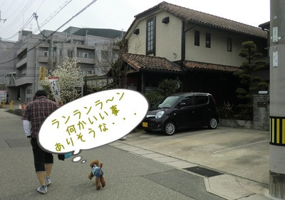 20110417blog21.jpg