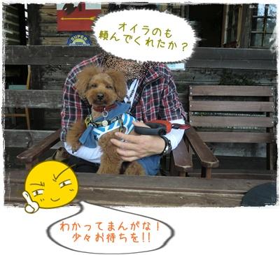 20110417blog24.jpg