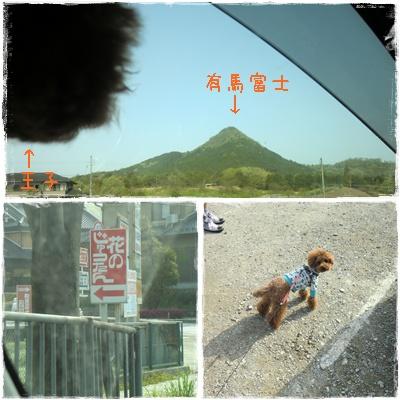 20110504blog1.jpg