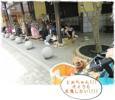 20110504blog13.jpg