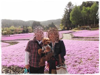 20110504blog4.jpg